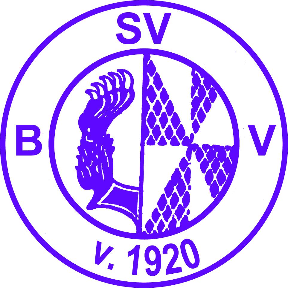 Bruchhausen_Vilsen Logo.jpg